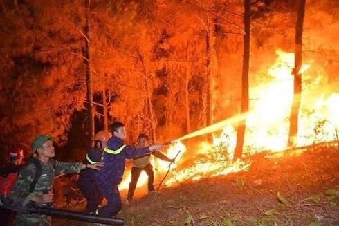 Vì sao không cho máy bay trực thăng chữa cháy rừng miền Trung?