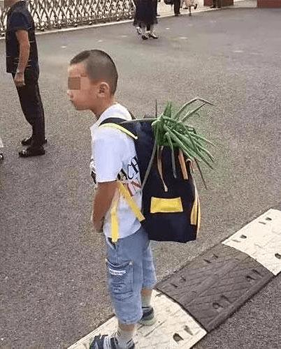 Cậu bé đeo hành đi khai giảng