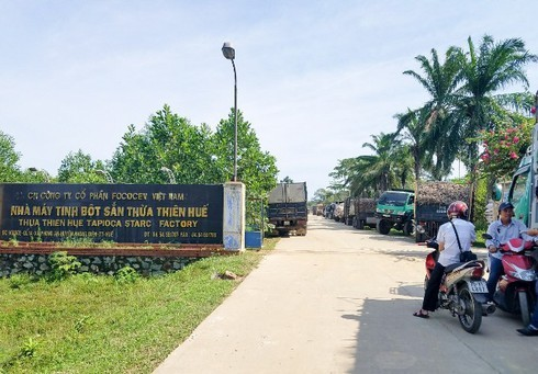 Xả nước thải vượt quy chuẩn, nhà máy tinh bột sắn ở TT Huế bị phạt gần 500 triệu đồng