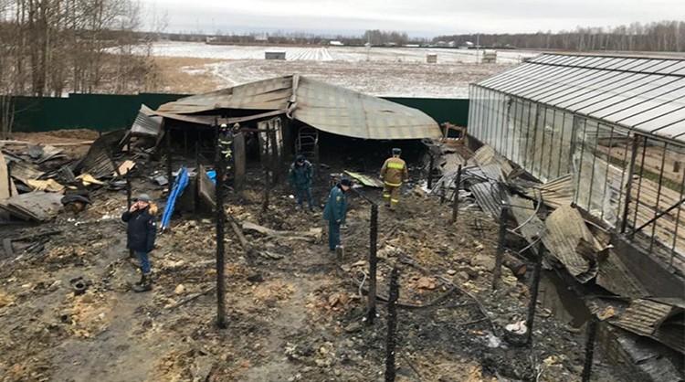 Cháy nhà kính Nga, 8 người Việt có thể thiệt mạng