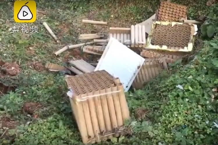 Gần 250 con gà nghi chết vì tiếng pháo